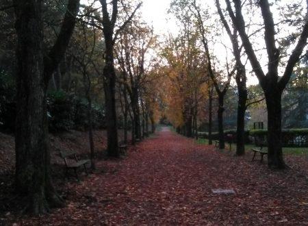 Io a Bologna…Modena…Carpi… (Zocca)